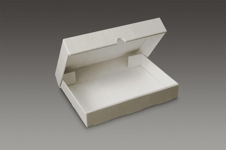 Klappdeckelbox SB 31 52x42x6 cm aus 1,6 mm Archiv-Wellpappe grau_weiß_KB